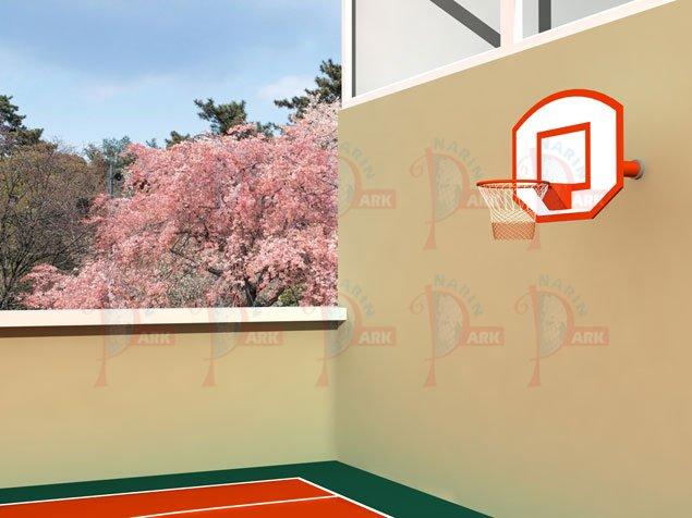 NP 636 - Duvara Monte Basketbol Potası
